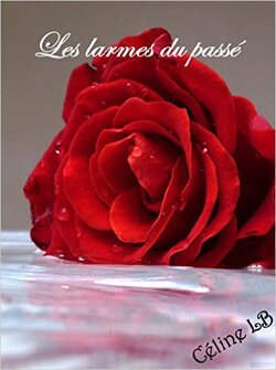 Les larmes du passé - Céline Langlois Becoulet