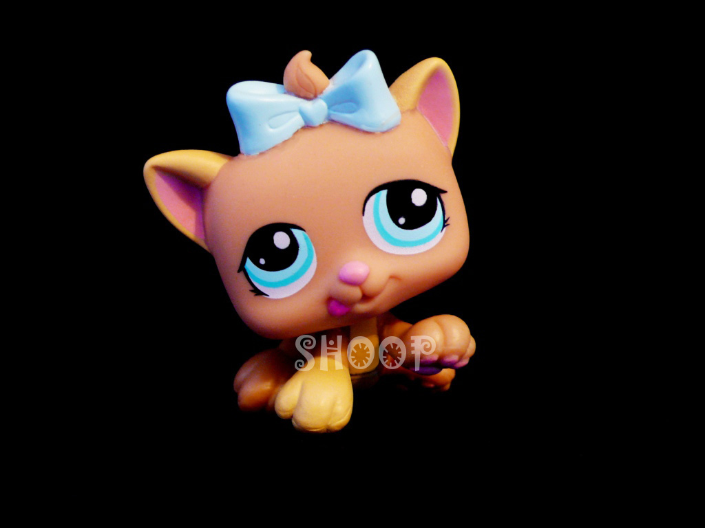 LPS 1335