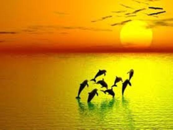 Coucher de soleil sur la mer, Marine DUSSARRAT