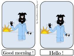 Flashcards good morning hello