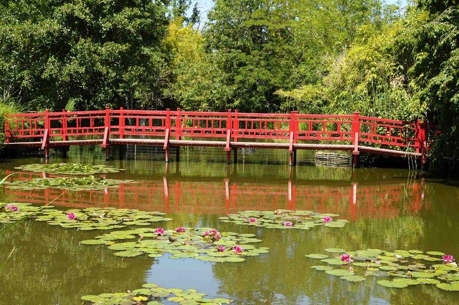 « Le Parc floral Court d'Aron 3 »