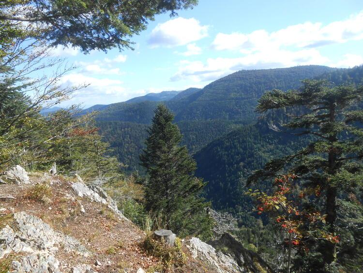 Vosges - depuis le rouge gazon