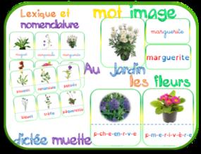 Les fleurs : nomenclature-mots et images-dictées muettes