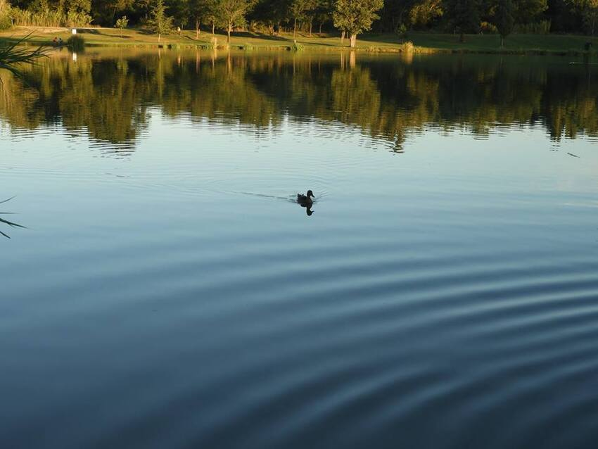 Le lac un soir...