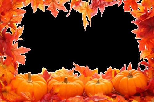 Tube Cadre automne
