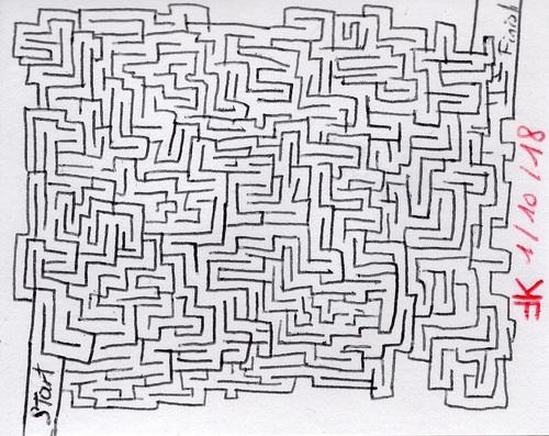 Le premier labyrinthe de 2018