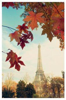 Un vent d'automne