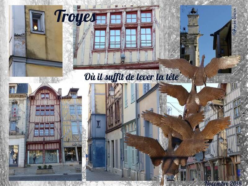 Troyes et ses oies