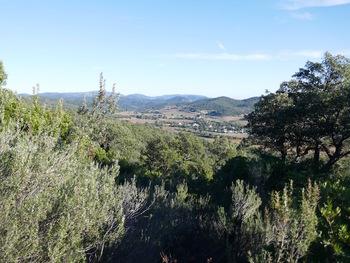 La vallée des Borrels