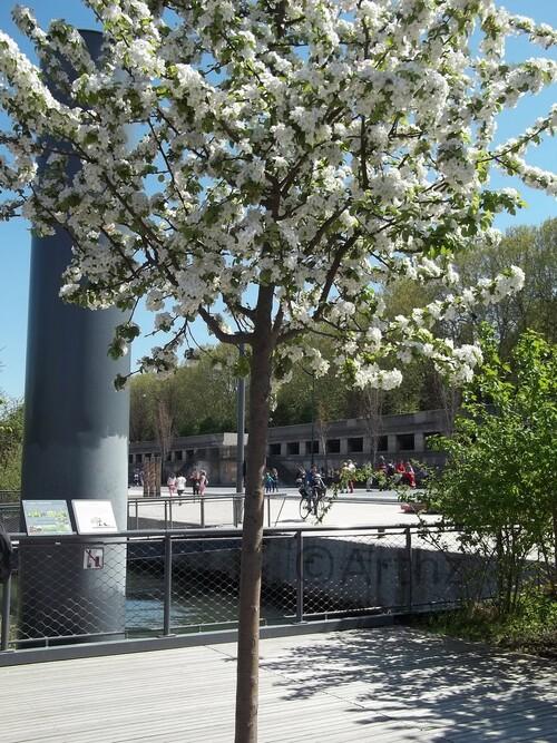 Balade à Paris 19-04-15, Un Jardin Flottant