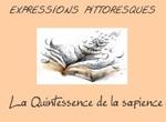Expressions québécoises avec plus d'explications. (F)