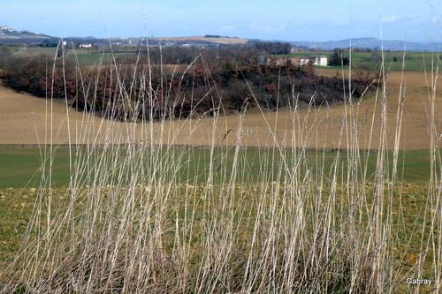 Le Lauragais: paysages en février