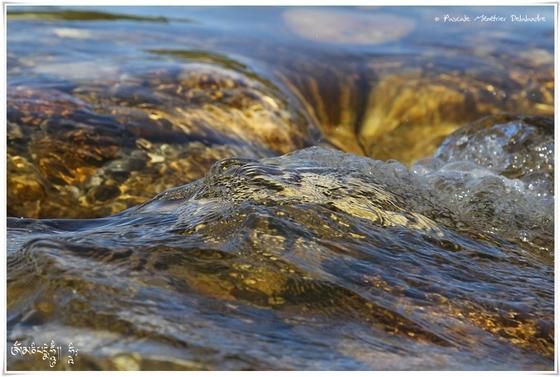 En eaux vives...