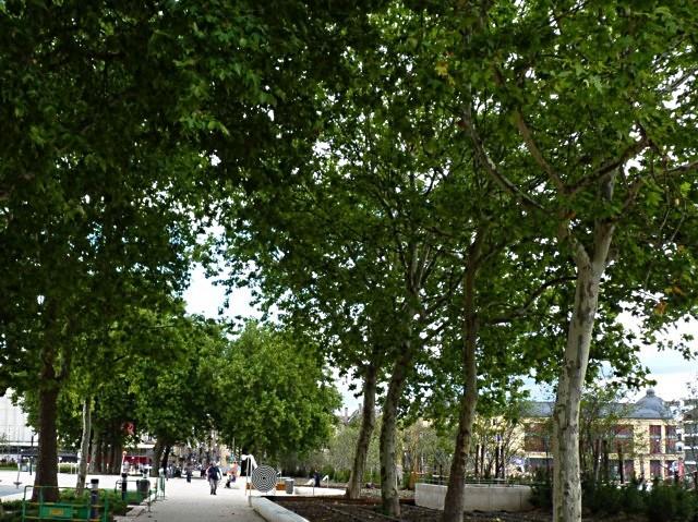 Metz ville verte - mp1357 26 01 2011 17