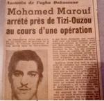 Maârouf  Mohamed