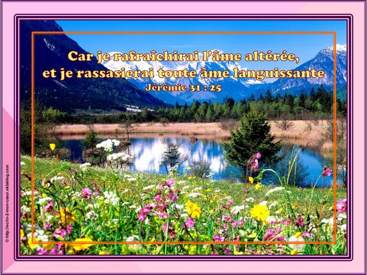 Je rafraîchirai l'âme altérée - Jérémie 31 : 25