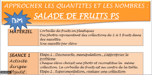 Salade de fruits PS