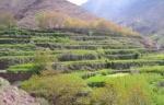 Mettre en valeur l'agriculture de montagne