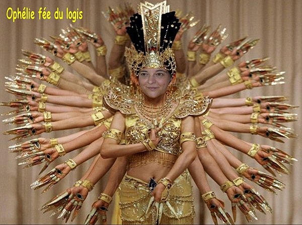Ophelie-fee-du-logis-.jpg
