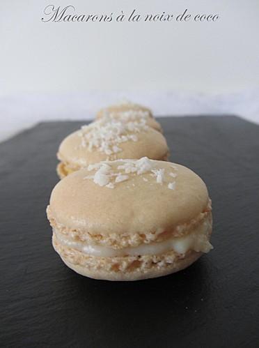 macaron-coco1.jpg