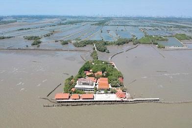 Replanter des mangroves pour protéger les villages ...