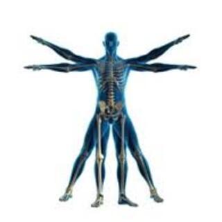 Se faire aider par l'ostéopathie