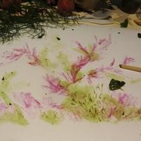 peintures en jus de fruits et légumes