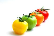 le vrai légumes bio 2017