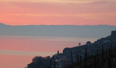 Saint-Saphorin - Coucher de Soleil vers Evian