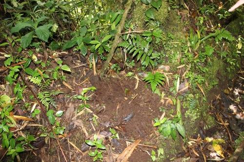 Parc national de Santa Elena