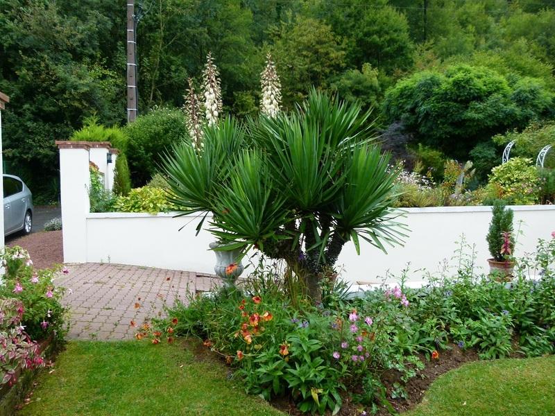 Un jardin a St Pierre les bytry ( oise)