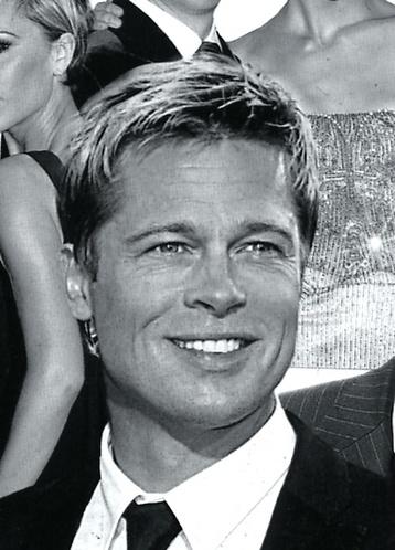 Brad Pitt (pour vous Mesdames)