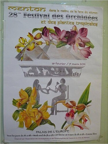 Affiche-festival-orchidees.jpg