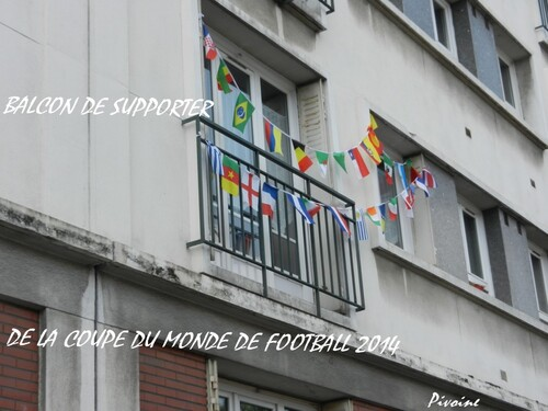 SUPPORTER DE LA COUPE DU MONDE DE FOOTBALL