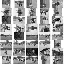 Planche Contact 12