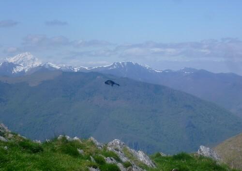 Vers le Pic de l'Escalette (Col de Menté) - 31