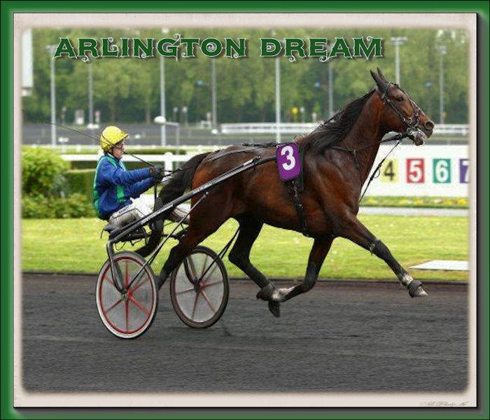 arlington dream