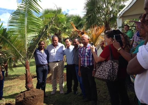 """Le Tampon: """"Le Parc des Palmiers a vocation à devenir une véritable référence internationale"""""""
