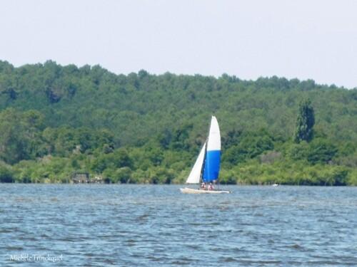 Une balade au Lac le 20 juillet (suite)...