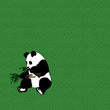 Fond de blog Panda
