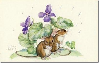 Violettes ....