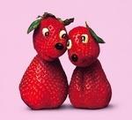 Les fraises de Novalee.
