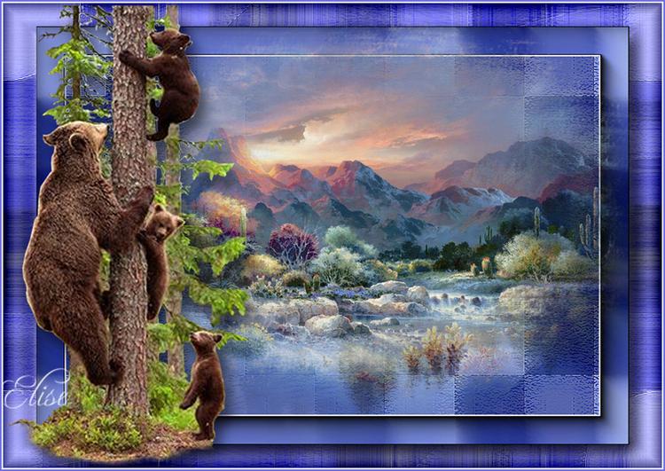 Les oursons    de Violine
