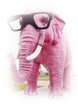 tube elephant