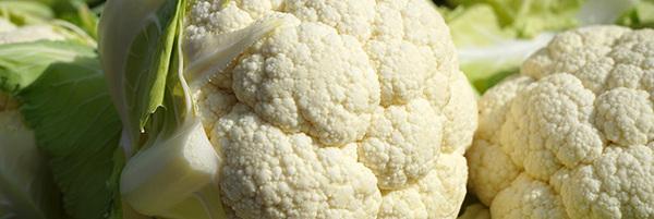 chou-fleur-legume-00-ban