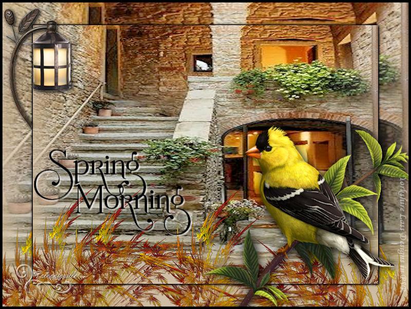 *** Spring Morning ***