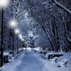 Paysage avec de la neige