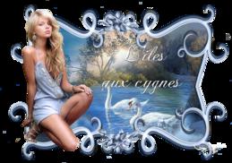L ile aux cygnes