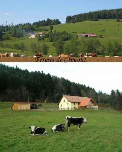 Circuit Touristique : Vallées des basses Vosges
