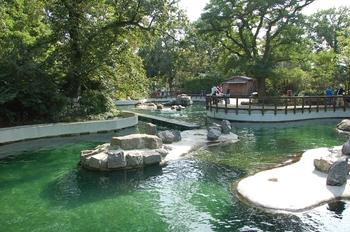 dierenpark emmen d50 025